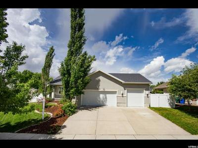 Single Family Home For Sale: 7482 S Park Village Dr