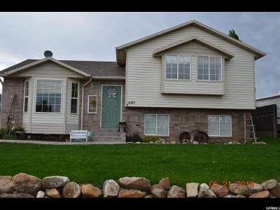 Tremonton Single Family Home For Sale: 491 W 800 S