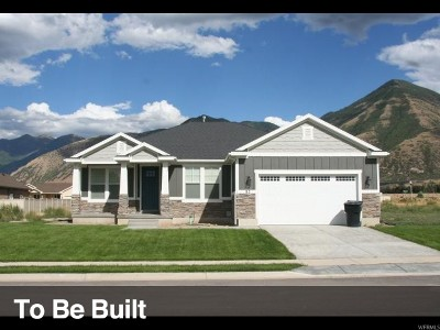 Orem Single Family Home For Sale: 245 W 580 S #1