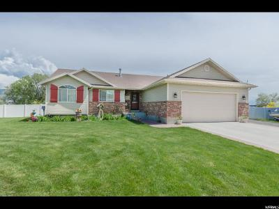 Tremonton Single Family Home For Sale: 2441 W 900 N