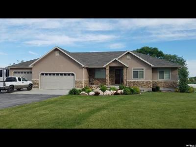 Honeyville UT Single Family Home For Sale: $495,000