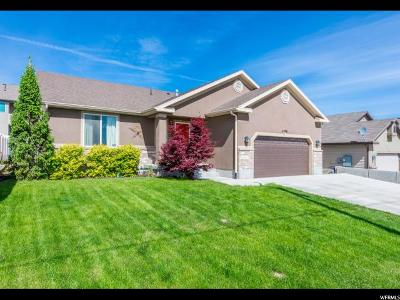 West Valley City Single Family Home For Sale: 4598 S 6000 W