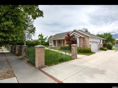 Provo Single Family Home For Sale: 591 E 2200 N