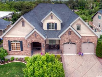 Orem Single Family Home For Sale: 2044 S 160 E