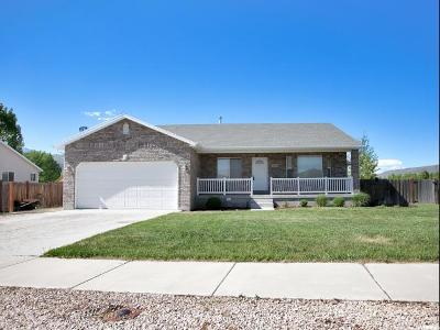 Wasatch County Single Family Home For Sale: 693 E 260 S