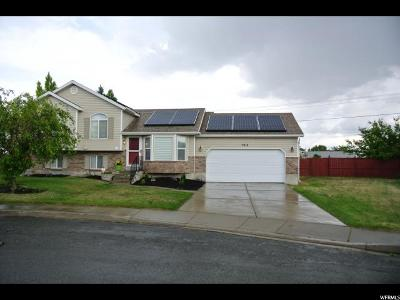 West Valley City Single Family Home For Sale: 2919 White Cony Cir