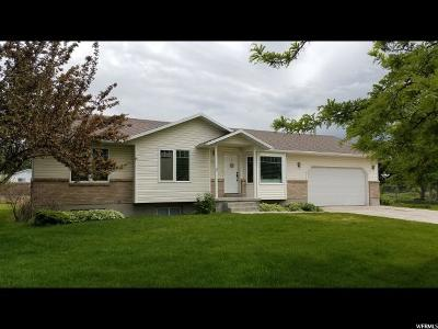 Logan Single Family Home For Sale: 1055 W 325 N