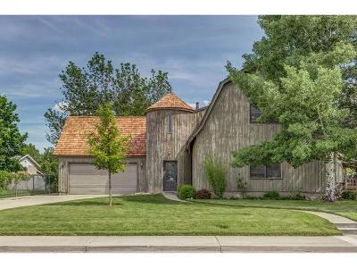 Orem Single Family Home For Sale: 437 E 1145 N