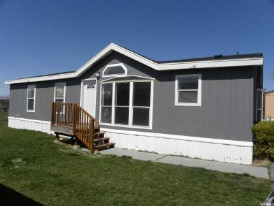 Logan Single Family Home For Sale: 463 N 630 W