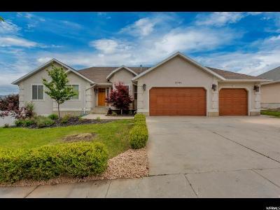 Draper Single Family Home For Sale: 12242 S Joseph View Ln W