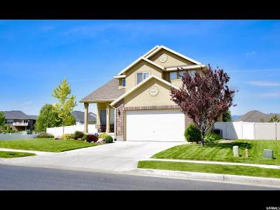 Stansbury Park Single Family Home For Sale: 5705 N Mast Ln