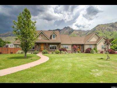 Alpine Single Family Home For Sale: 366 N Alpine Blvd