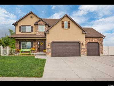 West Valley City Single Family Home For Sale: 4598 S Cape Ridge