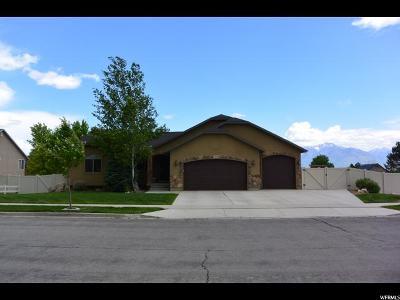 Herriman Single Family Home For Sale: 12637 S Brundisi Way
