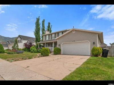 Kaysville Single Family Home For Sale: 419 W Mutton Hollow Rd