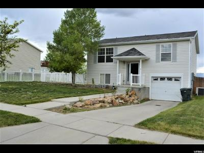 Tooele Single Family Home For Sale: 695 N 310 E