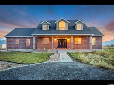 Spanish Fork Single Family Home For Sale: 4505 W 5600 S
