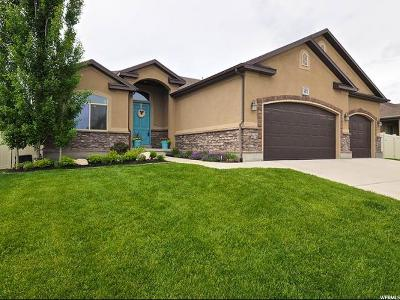 Riverton Single Family Home For Sale: 3471 W Chatel Dr