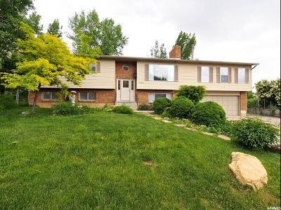 Pleasant Grove Single Family Home For Sale: 1126 E 30 S
