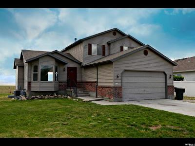 Tooele Single Family Home For Sale: 951 N 720 W