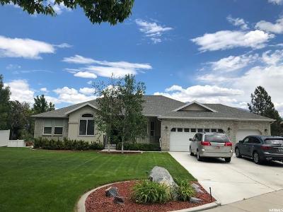 South Jordan Single Family Home For Sale: 11117 S Creek Ridge Cir