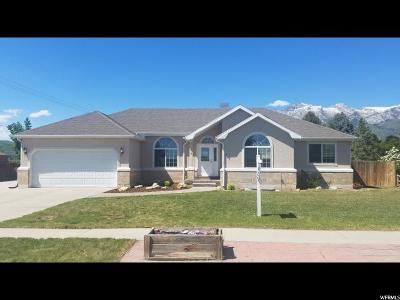 Alpine Single Family Home For Sale: 304 W Sunset Dr