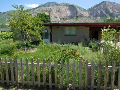 Weber County Single Family Home For Sale: 928 N Liberty Ave