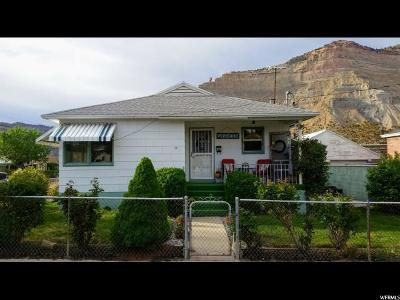 Carbon County Single Family Home For Sale: 390 Canyon St
