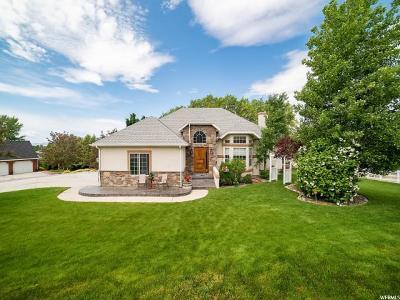 Alpine Single Family Home For Sale: 656 S Bateman Ln E