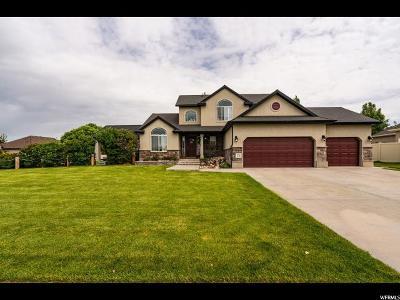 Layton UT Single Family Home For Sale: $459,000
