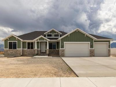 Grantsville Single Family Home For Sale: 643 S Gold Dust Rd E #743