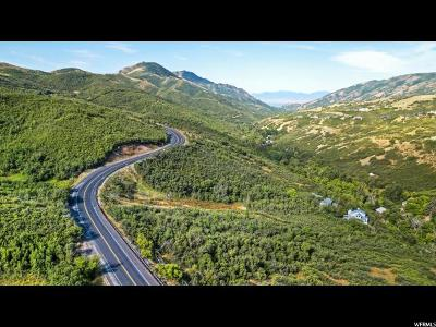 Salt Lake City Residential Lots & Land For Sale: 591 N Emigration Canyon Rd