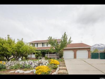 Alpine Single Family Home For Sale: 467 Peach Tree Cir
