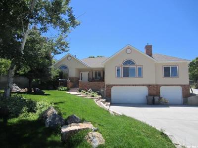 Santaquin Single Family Home For Sale: 650 E 450 S