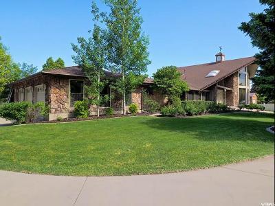 West Jordan Single Family Home For Sale: 7383 S 3100 W