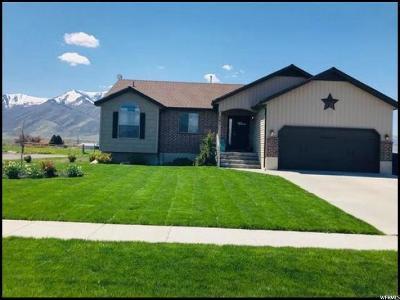 Wellsville Single Family Home For Sale: 561 N 800 E