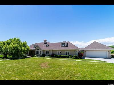 Alpine Single Family Home For Sale: 153 N Country Manor Ln