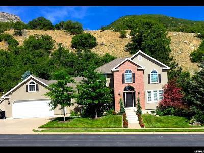 Farmington Single Family Home For Sale: 447 S Spencer Way
