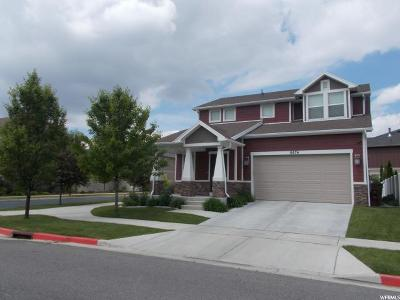 Midvale Single Family Home For Sale: 6876 S Suzanne Dr