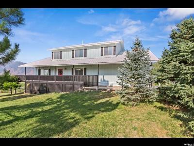 Spanish Fork Single Family Home For Sale: 1143 E 800 N