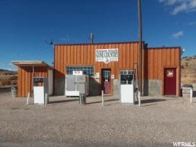 Grouse Creek UT Commercial For Sale: $85,000