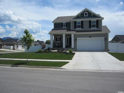 Layton Single Family Home For Sale: 773 W 750 S
