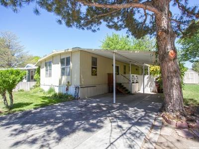 Salt Lake City Single Family Home For Sale: 1636 W Spring St N