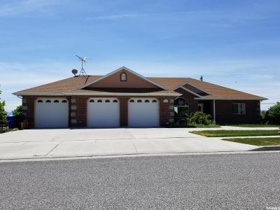 Tremonton Single Family Home For Sale: 1020 N Valley View Dr