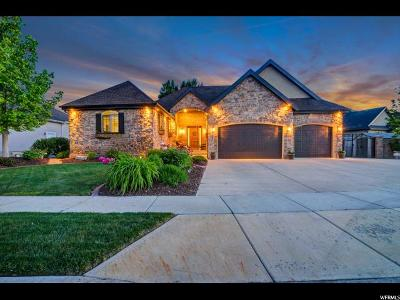 Spanish Fork Single Family Home For Sale: 1041 W River Hill Dr