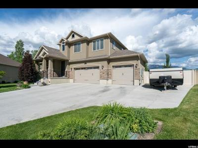 Layton Single Family Home For Sale: 845 W 700 S