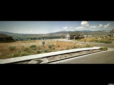 Lehi Residential Lots & Land For Sale: 4517 N Ridge View Way