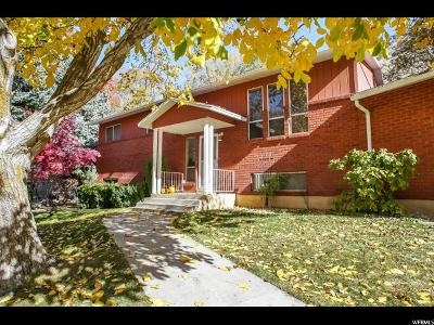 Brigham City Single Family Home For Sale: 1128 Oak Pl