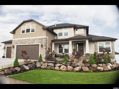 Saratoga Springs Single Family Home For Sale: 746 Appellation Dr N #43