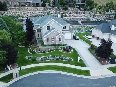 Draper Single Family Home For Sale: 12929 S Glacier Summit Dr